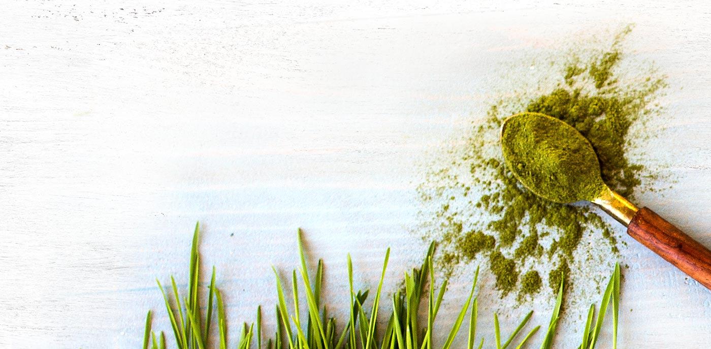 Grass Spoon Background